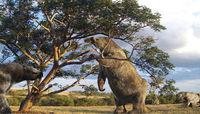 Ленивцы размером со слона: Америка эпохи первых переселенцев