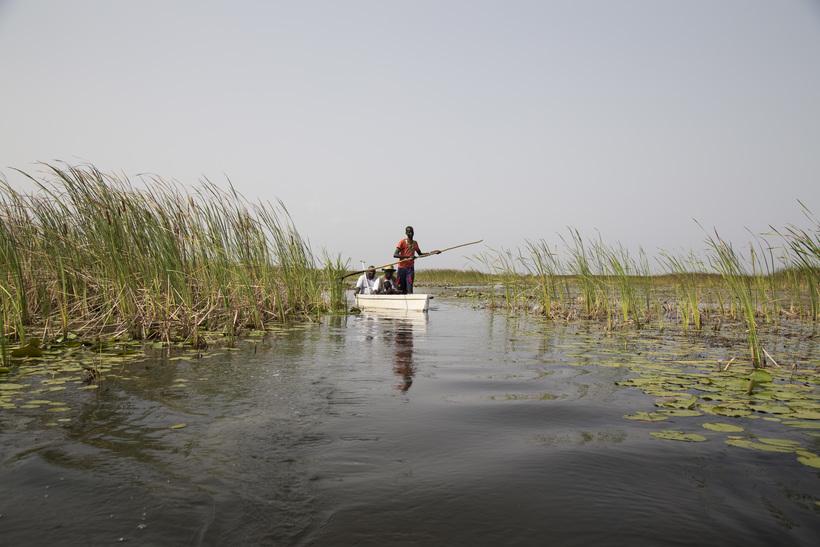 Как живут нилоты, дома которых стоят посреди самого большого болота Африки