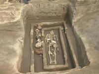скелеты из Китая