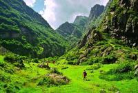 Горная природа Казбека