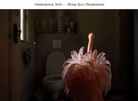 Представлены потрясающие победители конкурса Sony World Photography Awards 2019