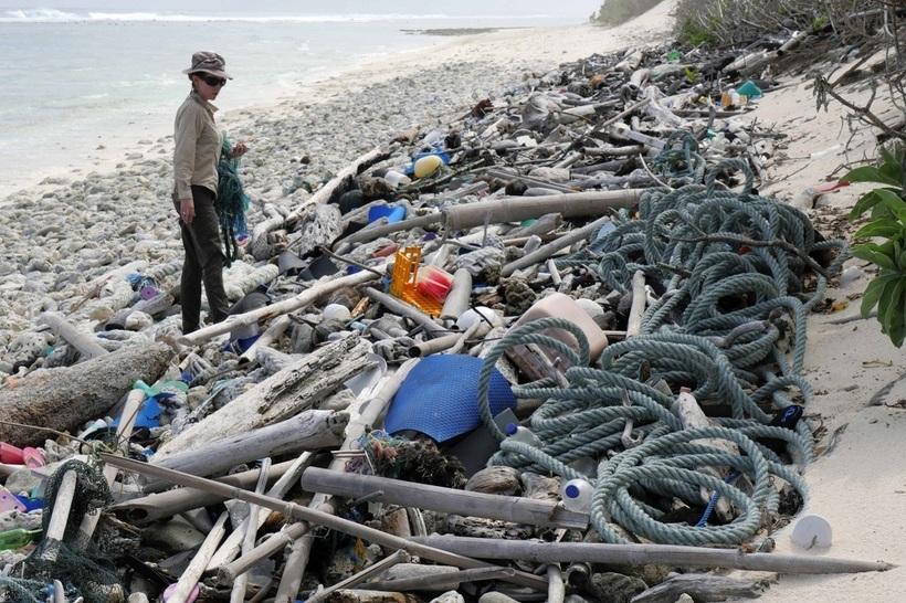 ранения свалка в атлантическом океане фото социальные работники частный