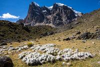 Природные зоны гор