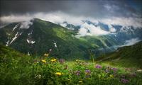 На Кавказе есть альпийские луга
