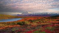Хребет Аляски
