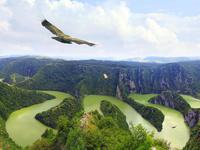 Живописный каньон реки Увац