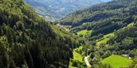 Тюрингенский Лес