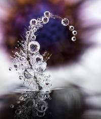 Макрофотографии капель воды, показывающие сверхъестественную красоту природы