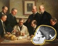 Пилтдаунский человек: антропологическая афера XX века, которая почти удалась
