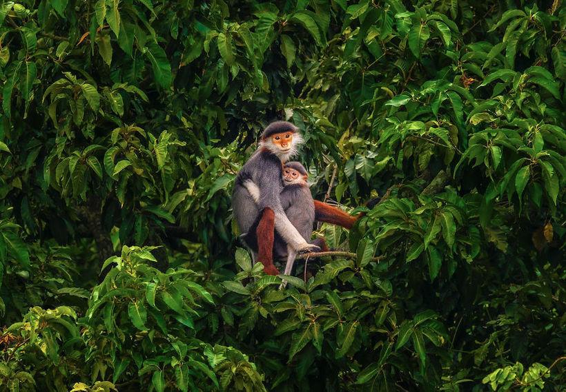 Фотографы со всего мира делятся снимками, которые для них означают любовь