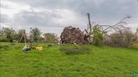 Ураган открыл людям страшную находку — скелет, тысячу лет скрывавшийся в корнях дерева