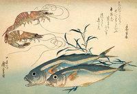 Где впервые появилось блюдо суши, и как оно распространилось по всему миру
