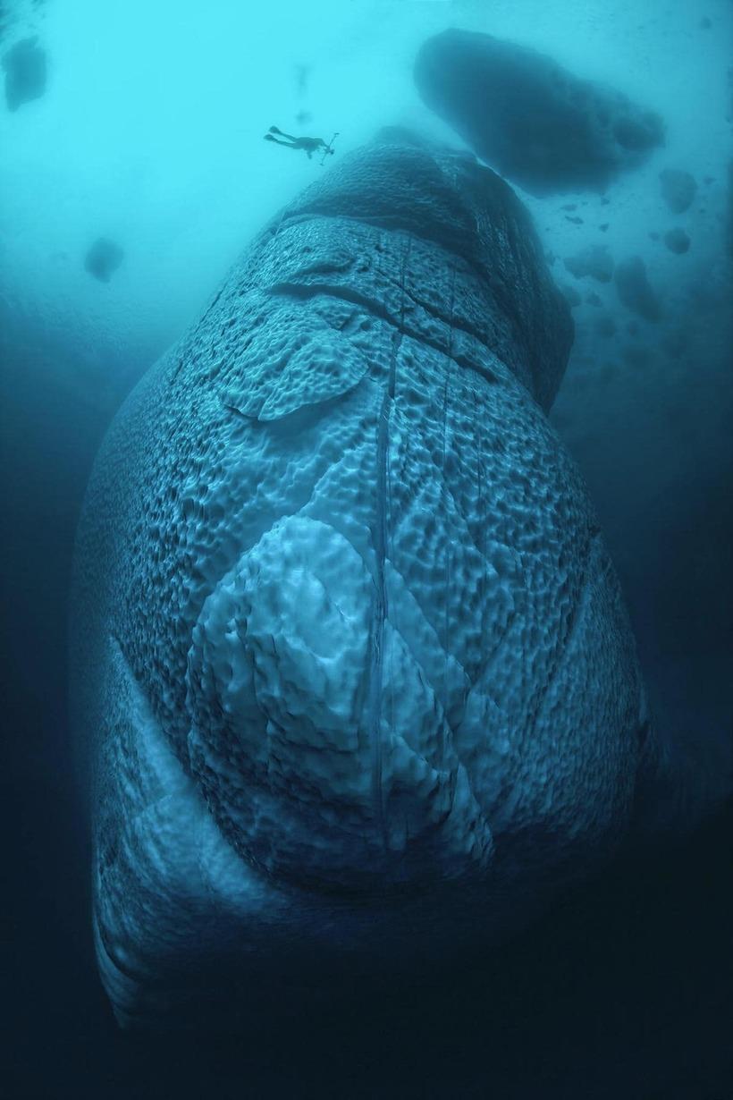 Взгляд снизу: потрясающие снимки айсбергов Гренландии под водой
