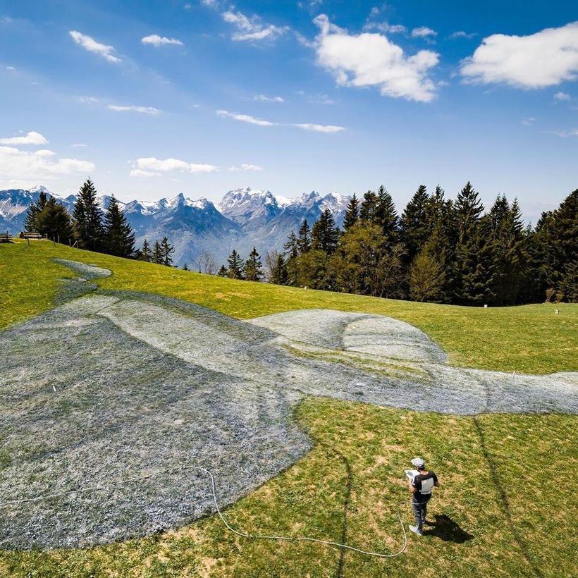 Художник нарисовал гигантскую картину прямо на траве
