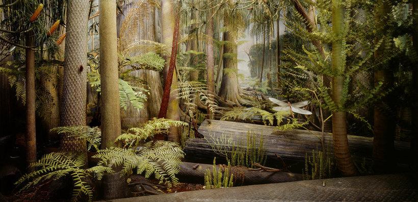 Как выглядели леса в период карбона, который подарил нам каменный уголь