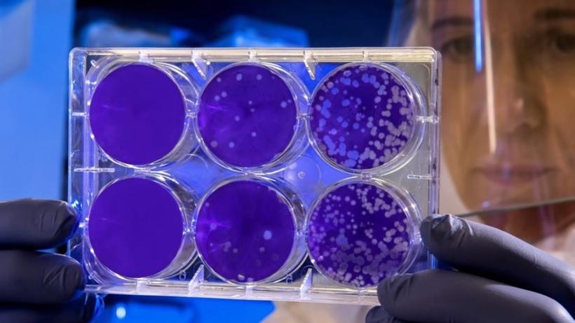 Видео: Феноменальные научные прорывы последних лет