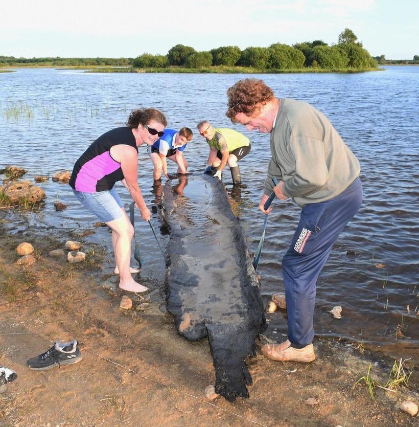 Мальчик в Ирландии не хотел делать уроки и совершил археологическое открытие