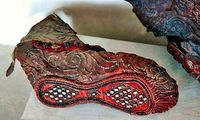 В горах Алтая обнаружили древнюю скифскую обувь, которой 2300 лет