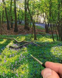 Буколические пейзажи выглядят столь реалистично, что их невозможно отличить от фото
