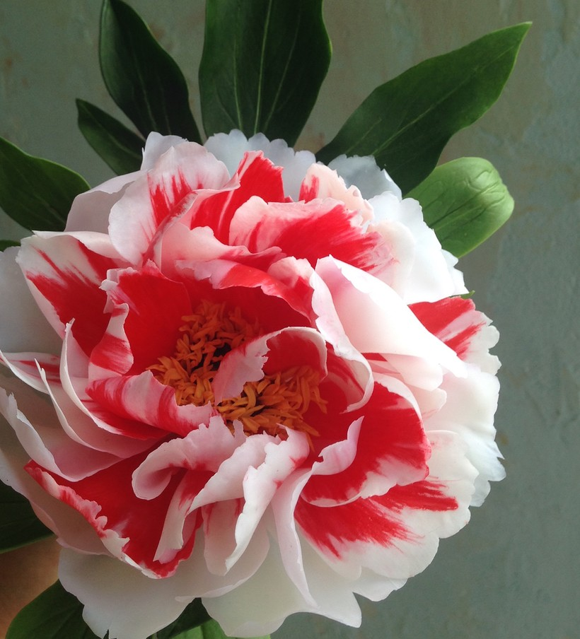 Как живые: украинская художница создает уникальные цветы из холодного фарфора