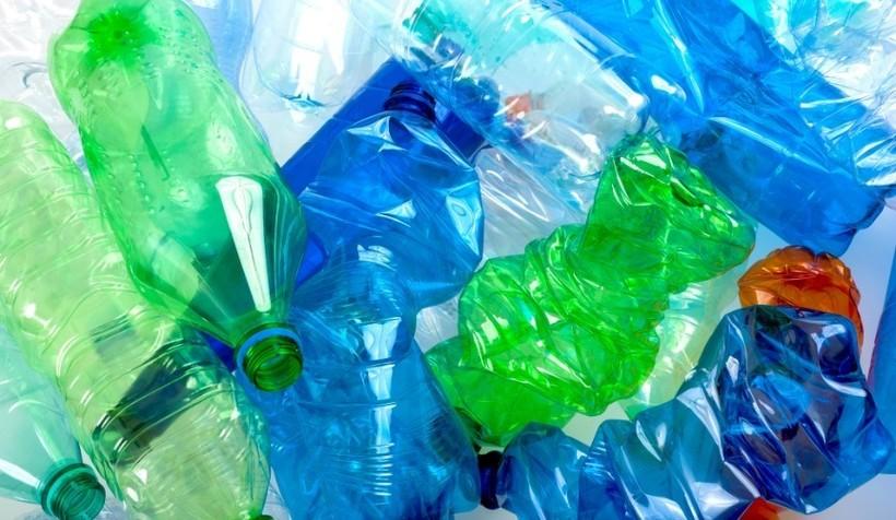 Бактерии умеют делать пластик без нефти: почему Менделееву бы это понравилось